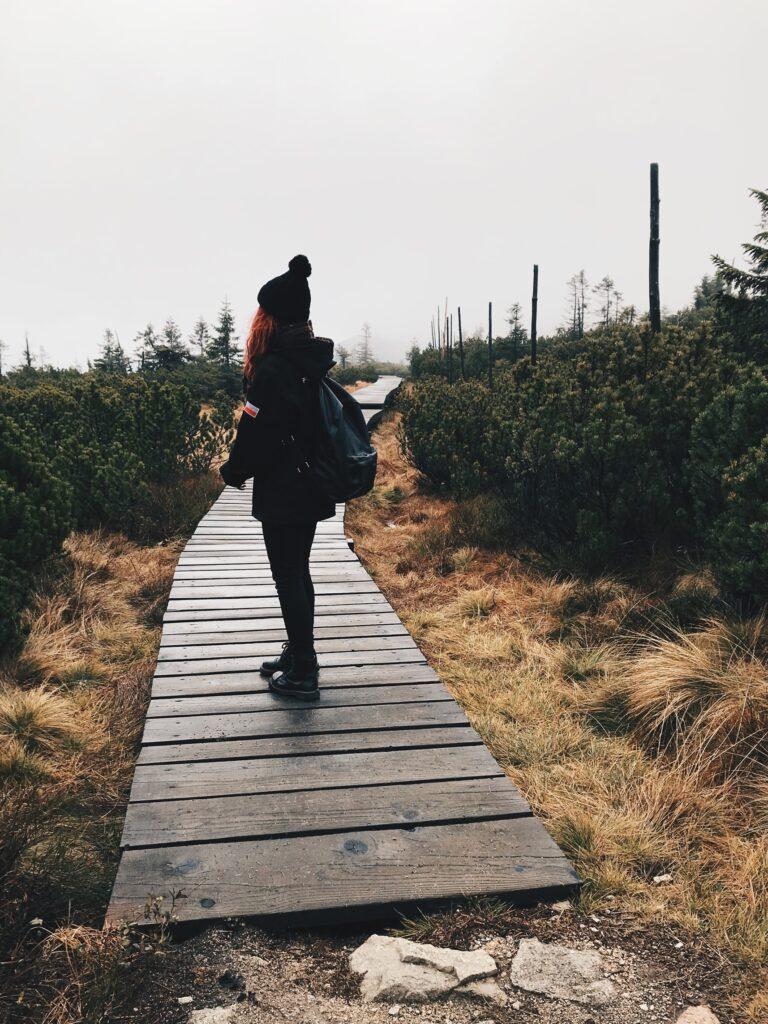 Droga na Szrenicę III