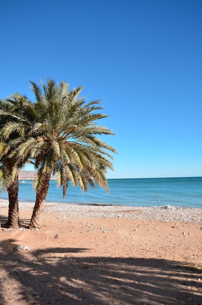 Plaża Altea