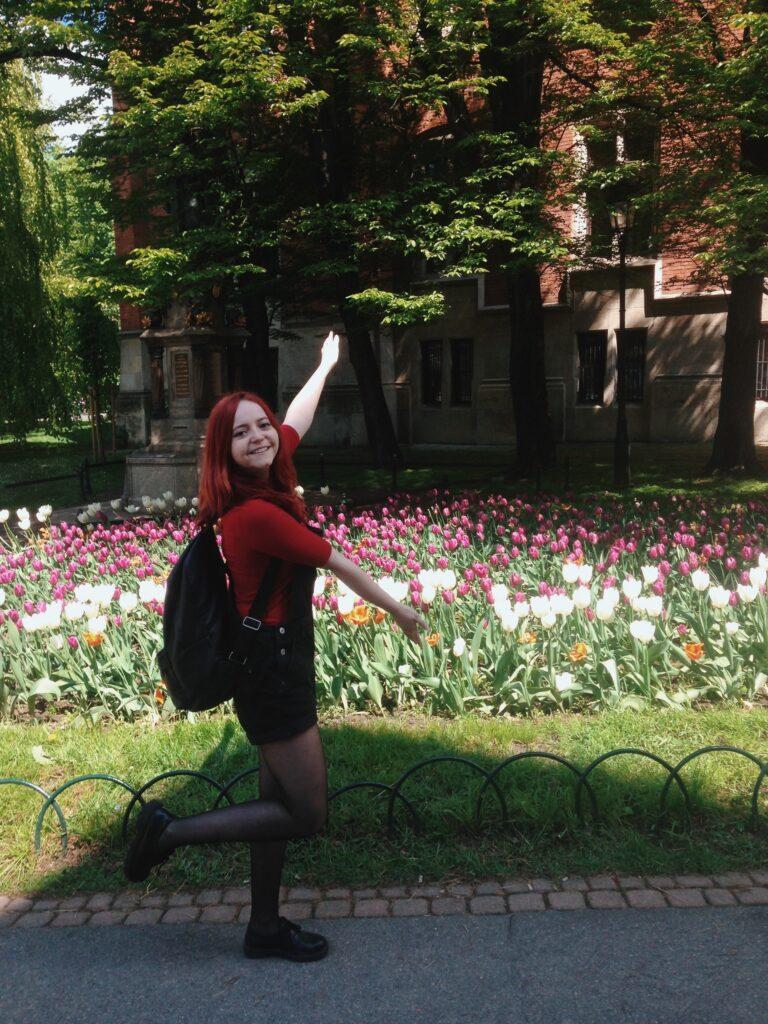 Tulipany w Krakowie